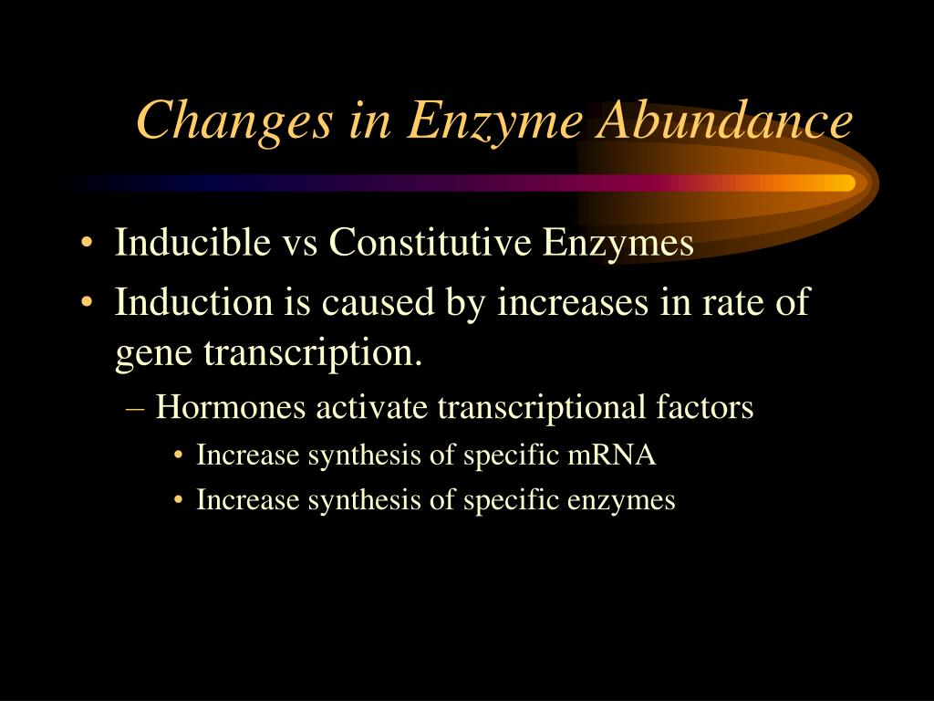 Changes in Enzyme Abundance