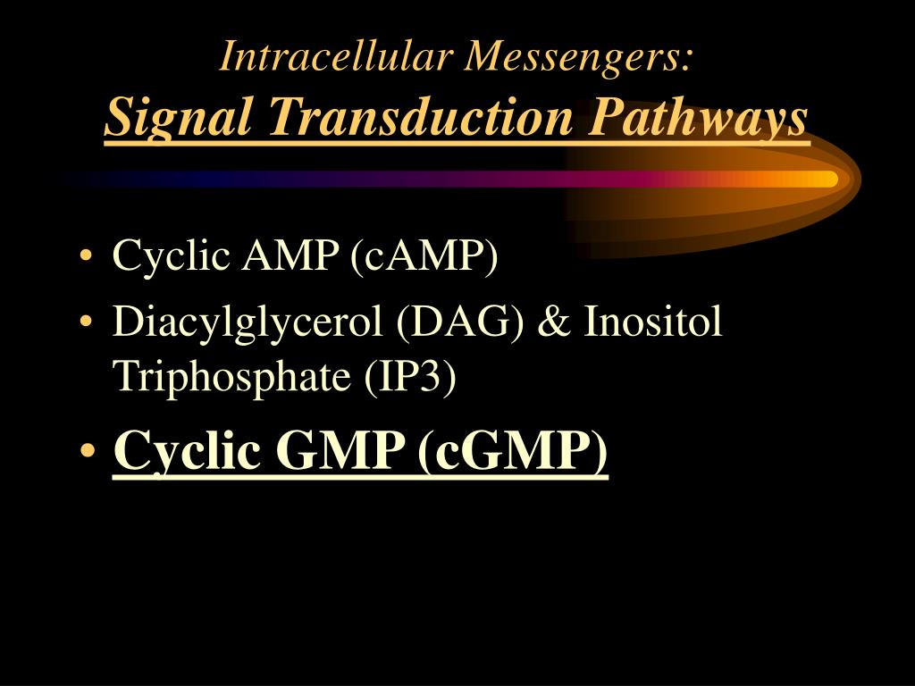 Intracellular Messengers: