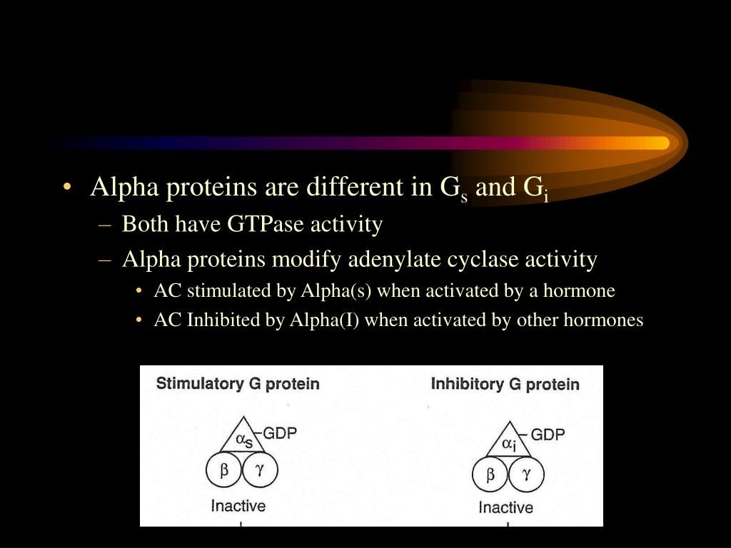 Alpha proteins are different in G