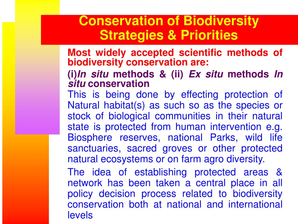 National biodiversity conservation strategy