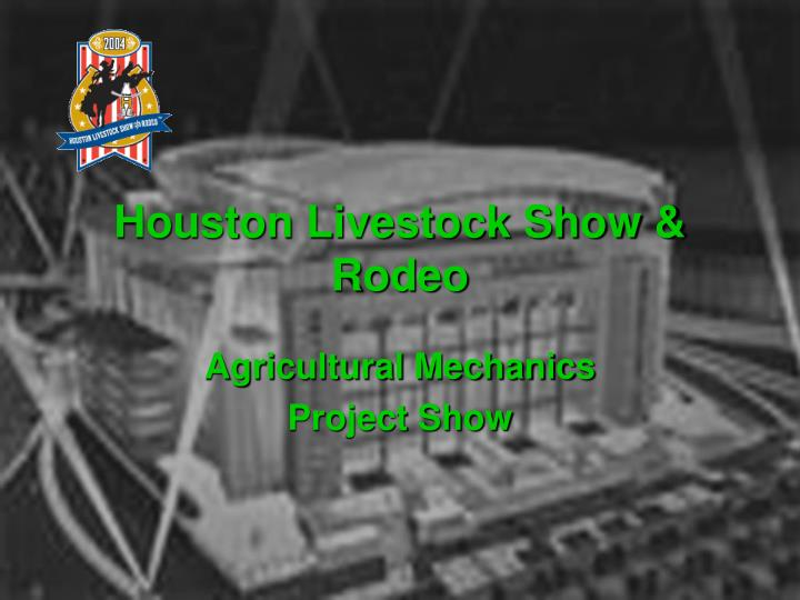 Houston livestock show rodeo