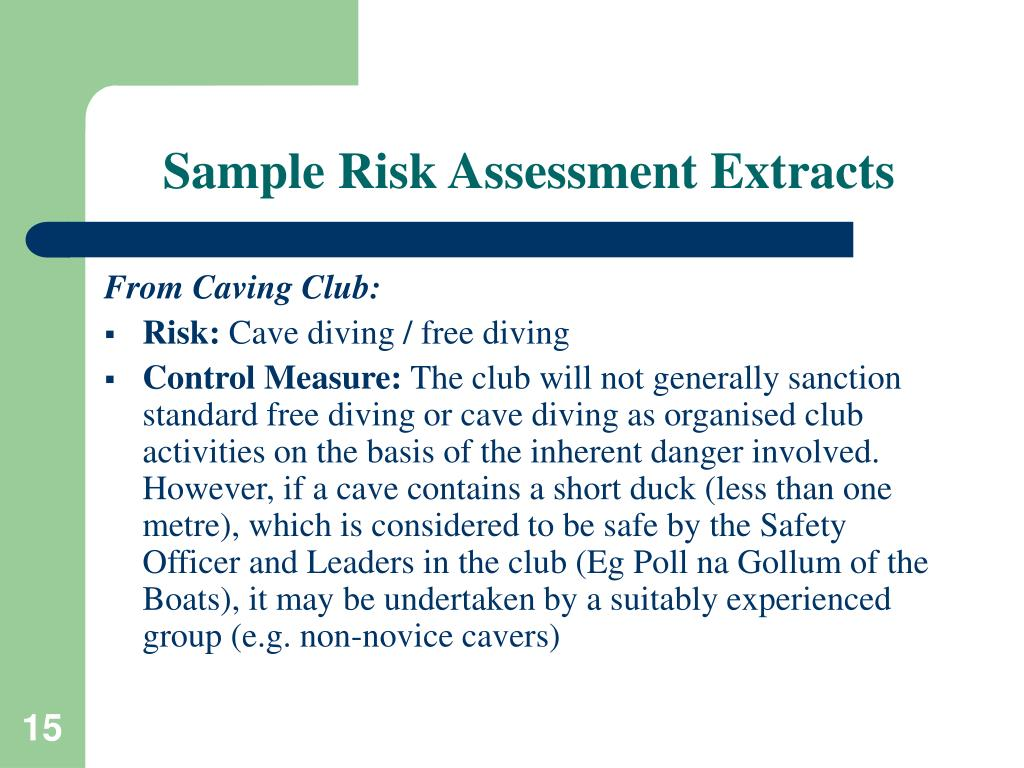 Sample Risk Assessment Extracts