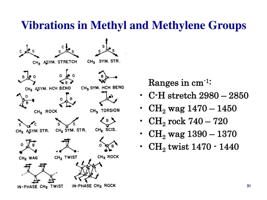 Vibrations in Methyl and Methylene Groups