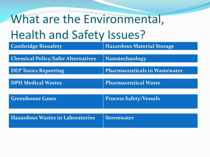 What are the environmental health and safety issues