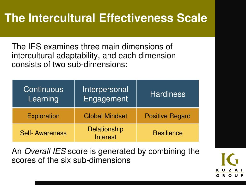 The Intercultural Effectiveness Scale