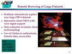 remote browsing of large datasets