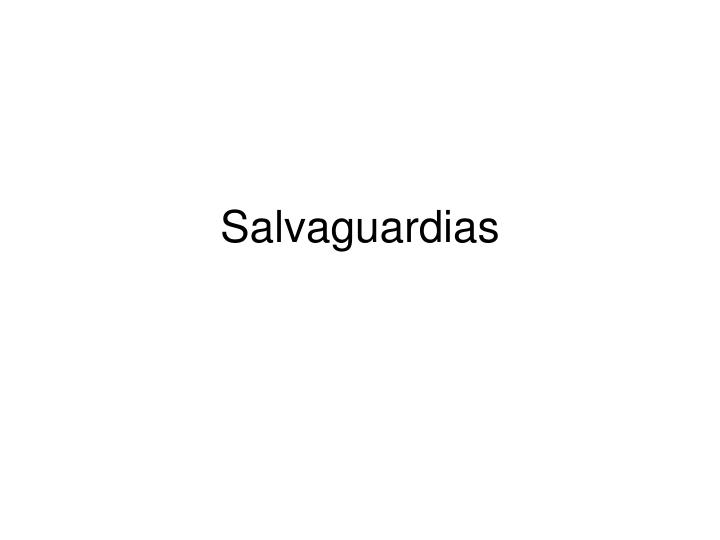 Salvaguardias l.jpg