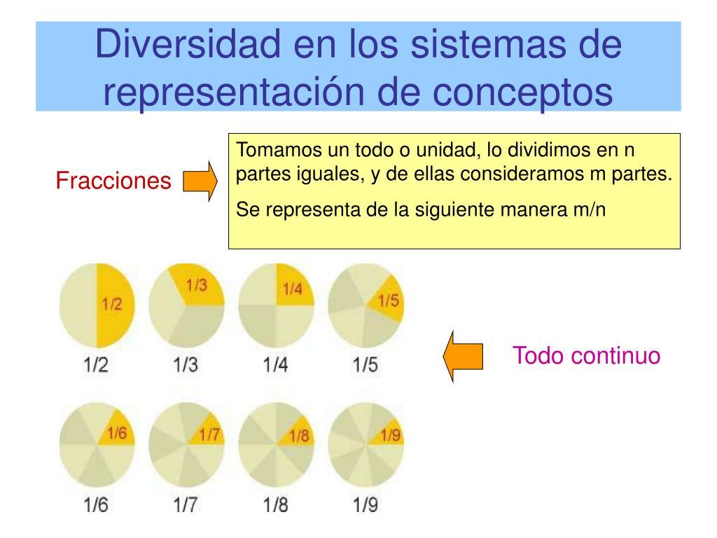 Diversidad en los sistemas de representación de conceptos