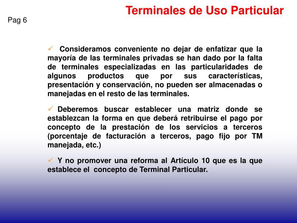 Terminales de Uso Particular