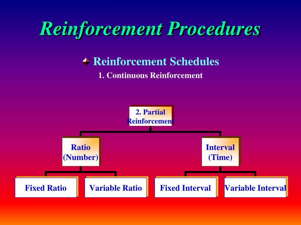 Reinforcement Procedures