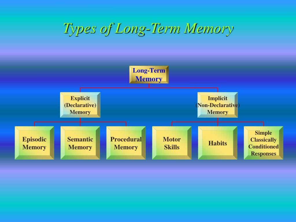Types of Long-Term Memory