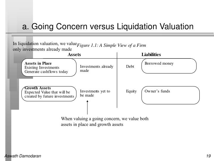 a. Going Concern versus Liquidation Valuation