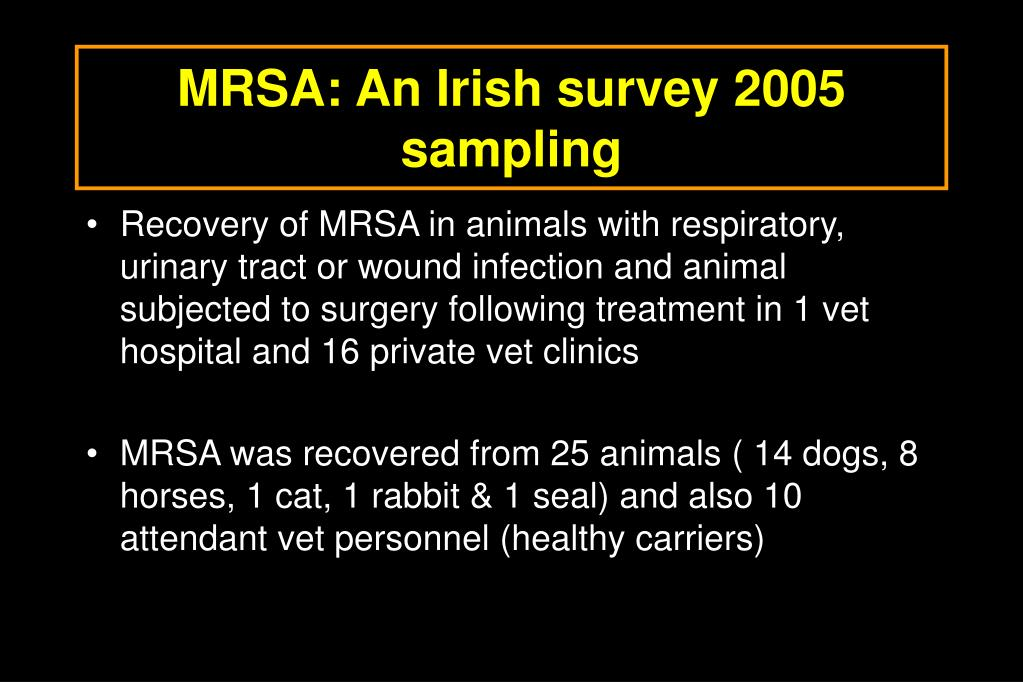 MRSA: An Irish survey 2005 sampling