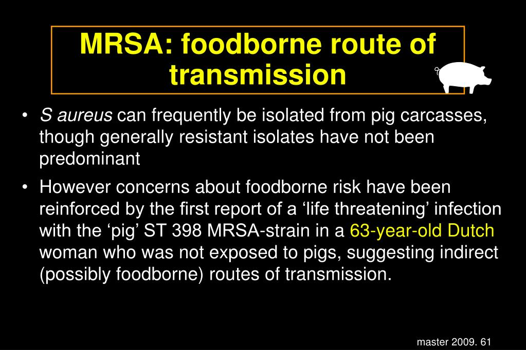MRSA: foodborne route of transmission