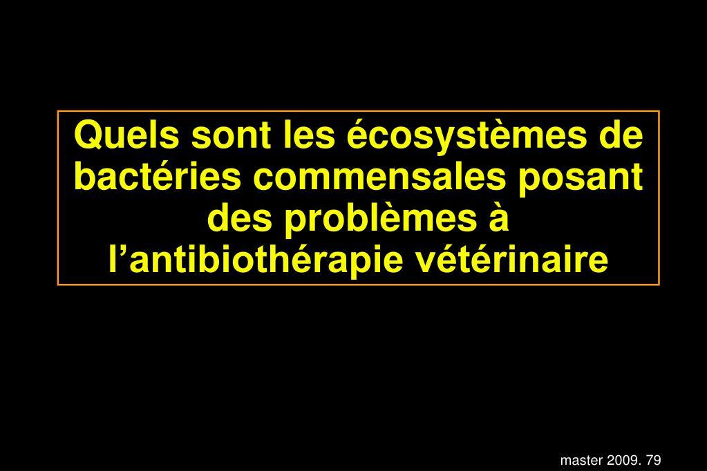 Quels sont les écosystèmes de bactéries commensales posant des problèmes à l'antibiothérapie vétérinaire