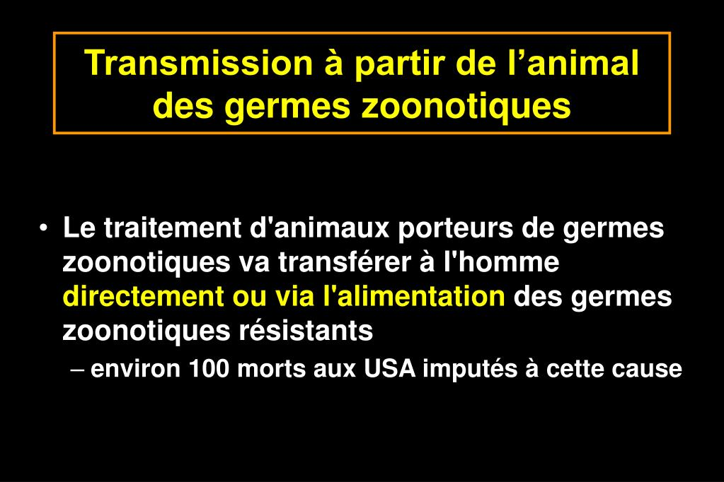Transmission à partir de l'animal  des germes zoonotiques
