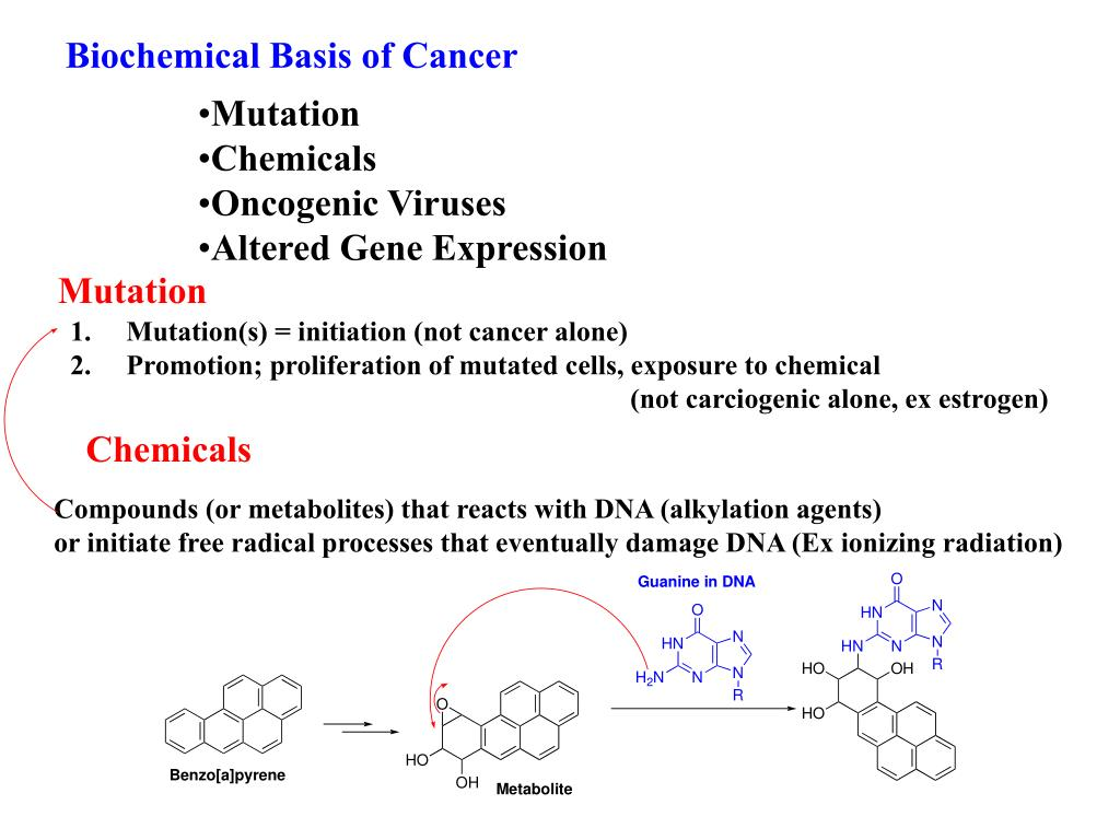 Biochemical Basis of Cancer