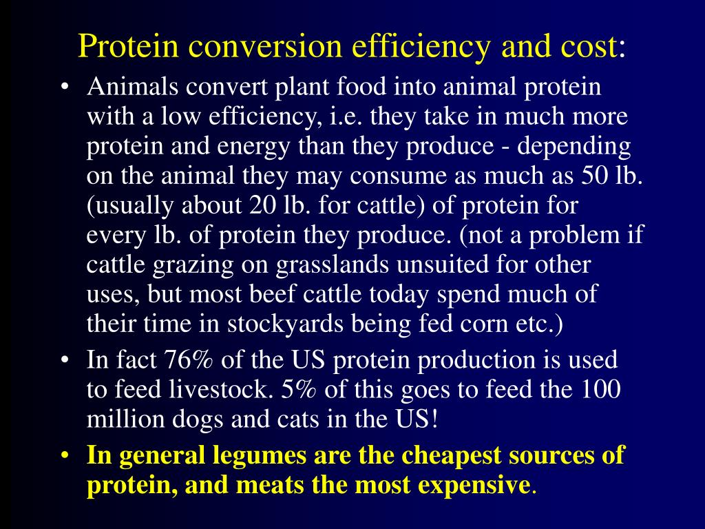 Protein conversion efficiency and cost