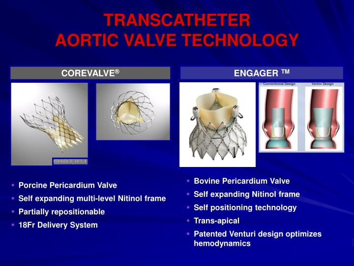 TRANSCATHETER                                                 AORTIC VALVE TECHNOLOGY