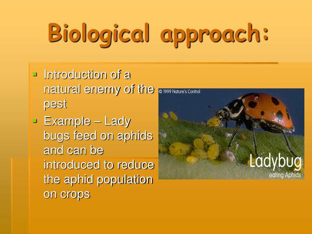 Biological approach: