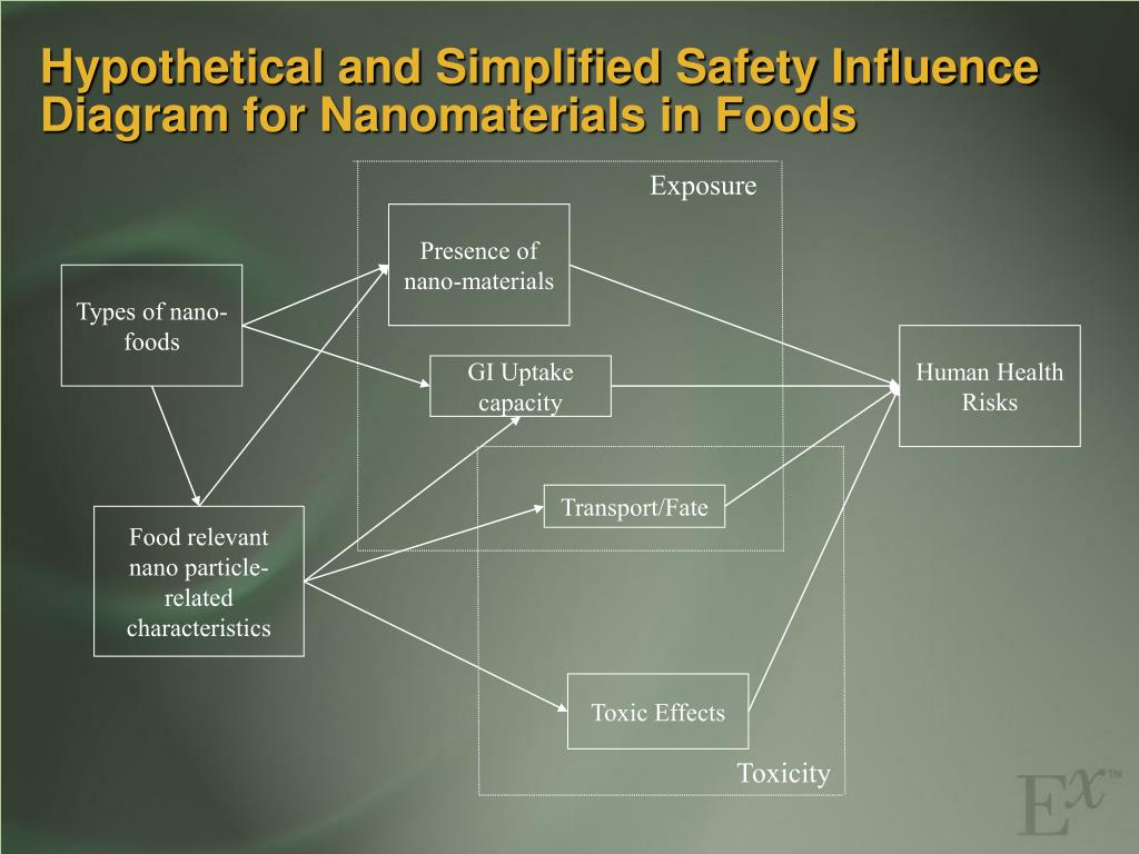 Hypothetical and Simplified Safety Influence Diagram for Nanomaterials in Foods