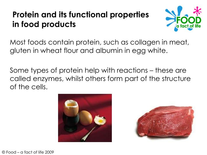 Protein and its functional properties in food products3