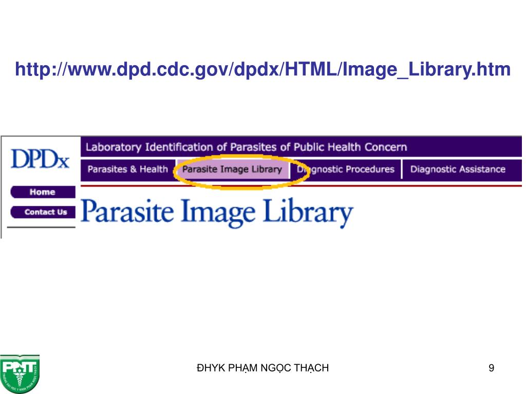 http://www.dpd.cdc.gov/dpdx/HTML/Image_Library.htm