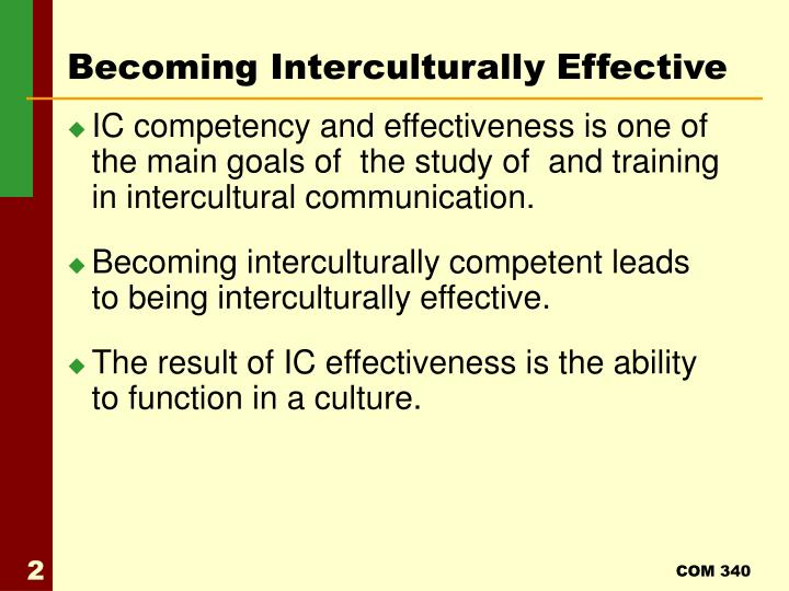 Becoming Interculturally Effective