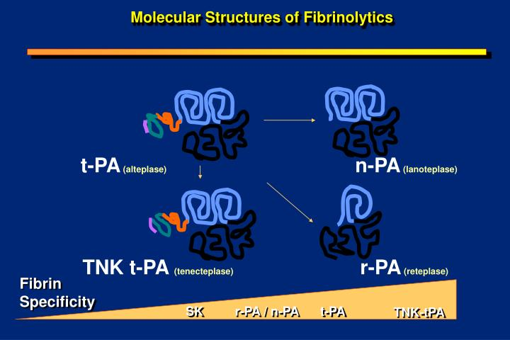 Molecular structures of fibrinolytics
