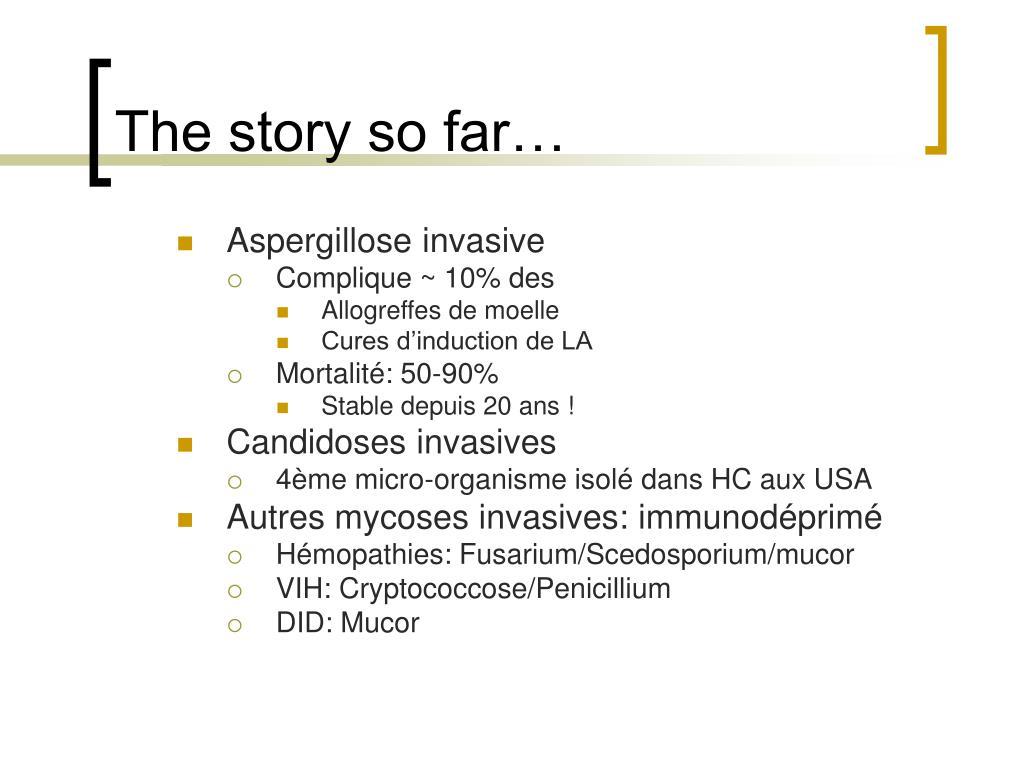 Aspergillose invasive