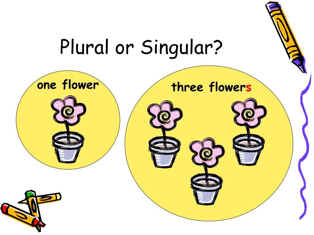 Plural or Singular?