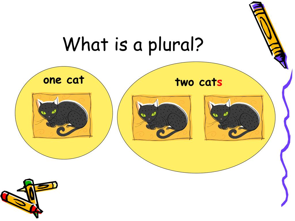 What is a plural?
