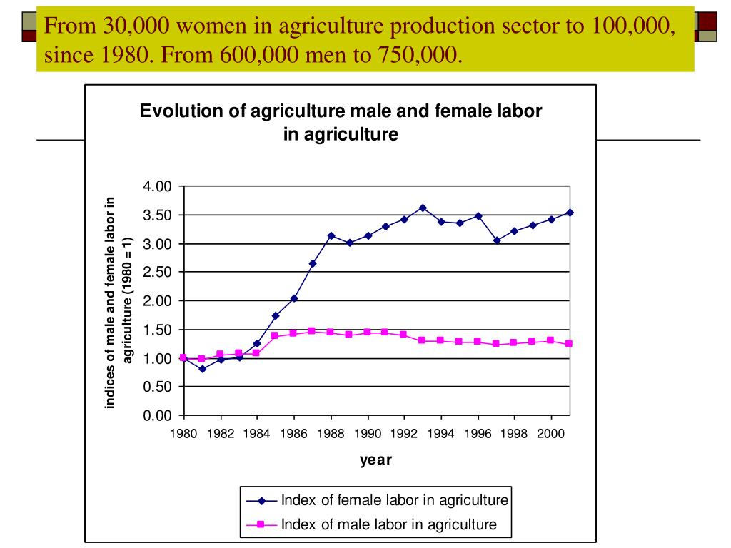 From 30,000 women in agriculture production sector to 100,000, since 1980. From 600,000 men to 750,000.