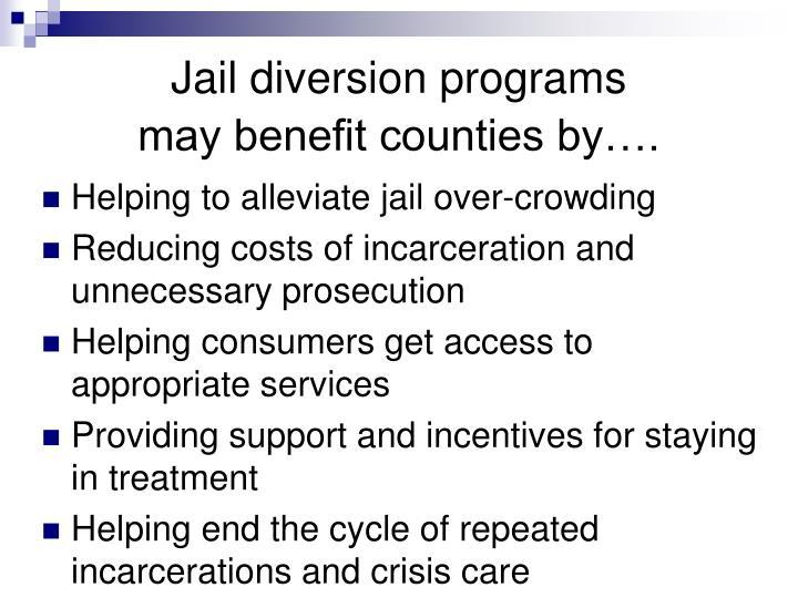 Diversion program