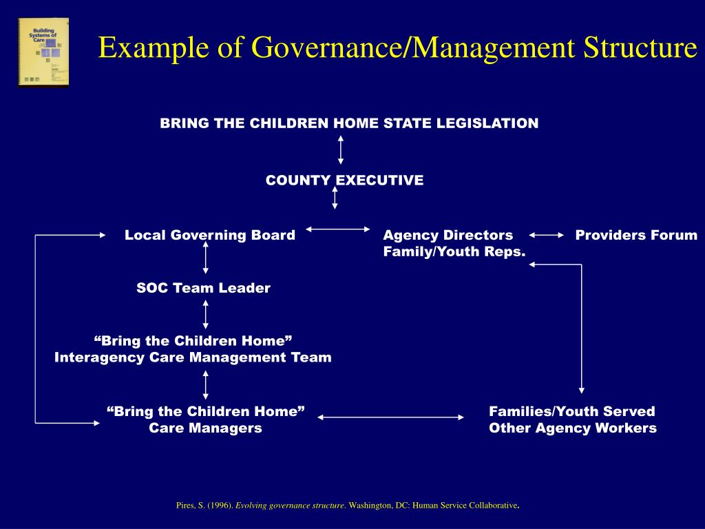 Example of Governance/Management Structure