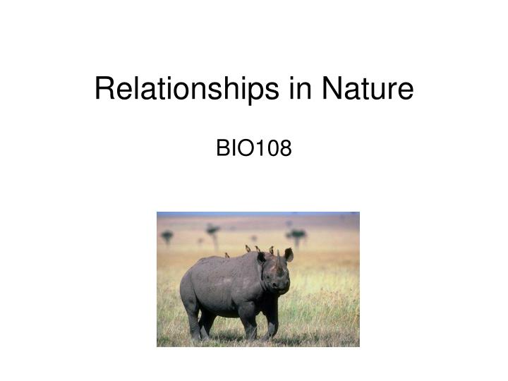 Relationships in nature l.jpg