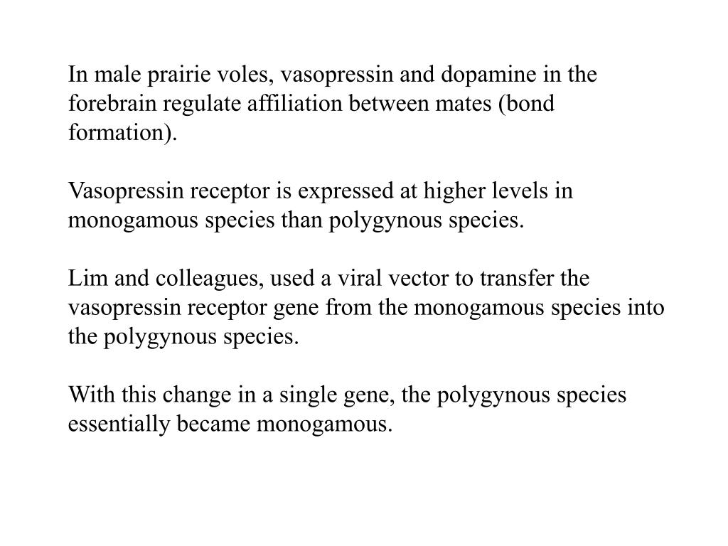 In male prairie voles, vasopressin and dopamine in the forebrain regulate affiliation between mates (bond formation).