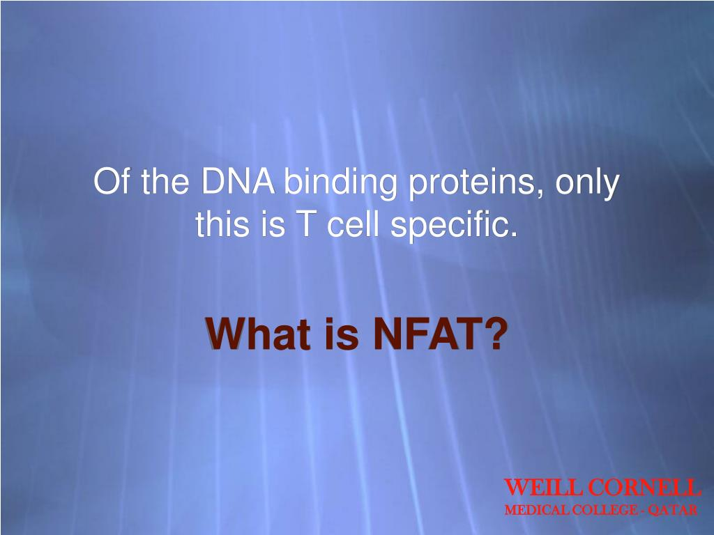 Of the DNA binding proteins, only this is T cell specific.