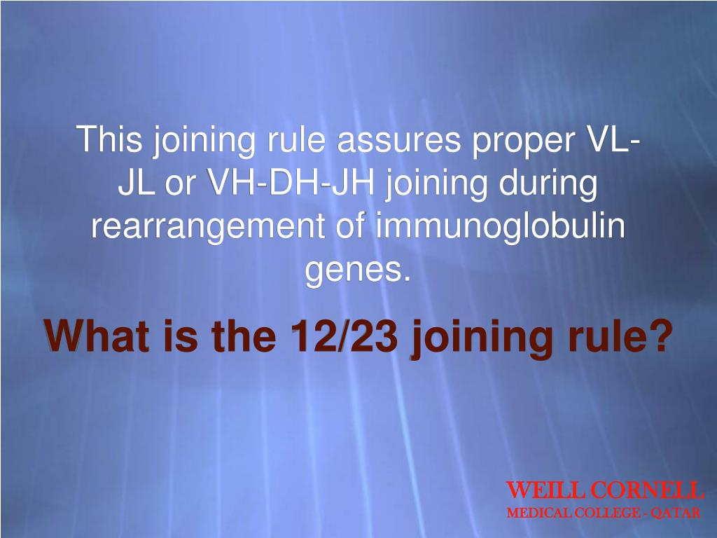 This joining rule assures proper VL-JL or VH-DH-JH joining during rearrangement of immunoglobulin genes.