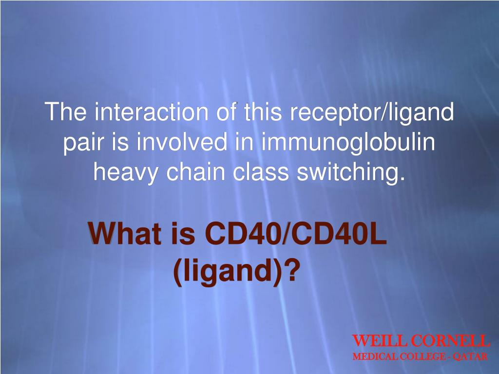 The interaction of this receptor/ligand pair is involved in immunoglobulin