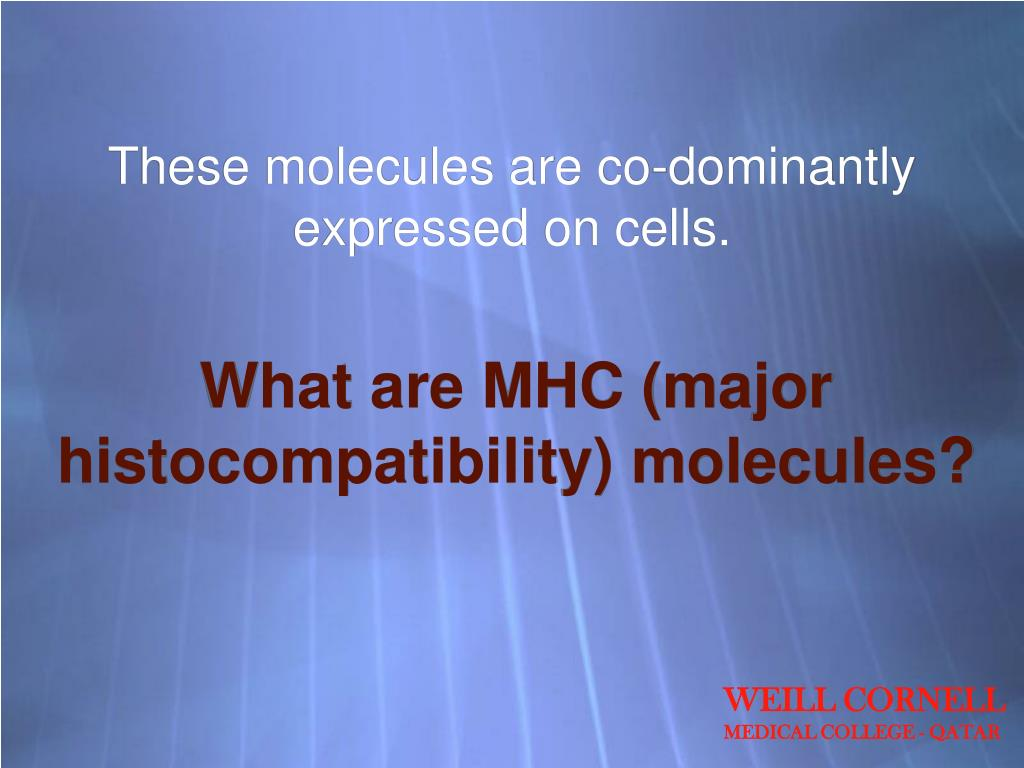 These molecules are co-dominantly expressed on cells.