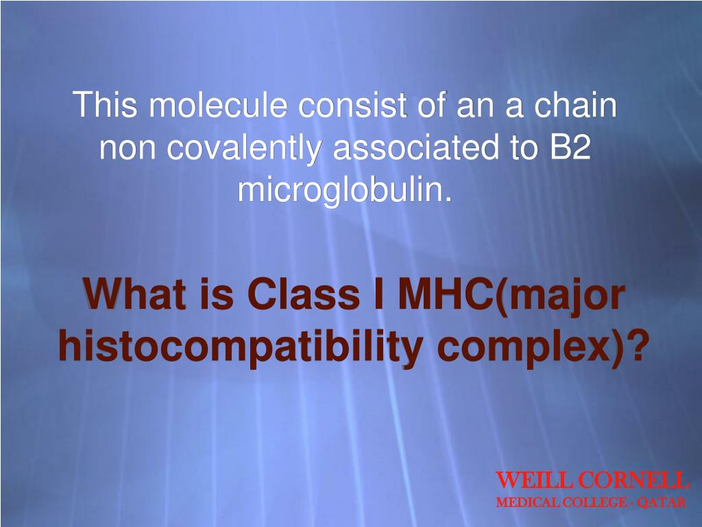 This molecule consist of an a chain non covalently associated to B2