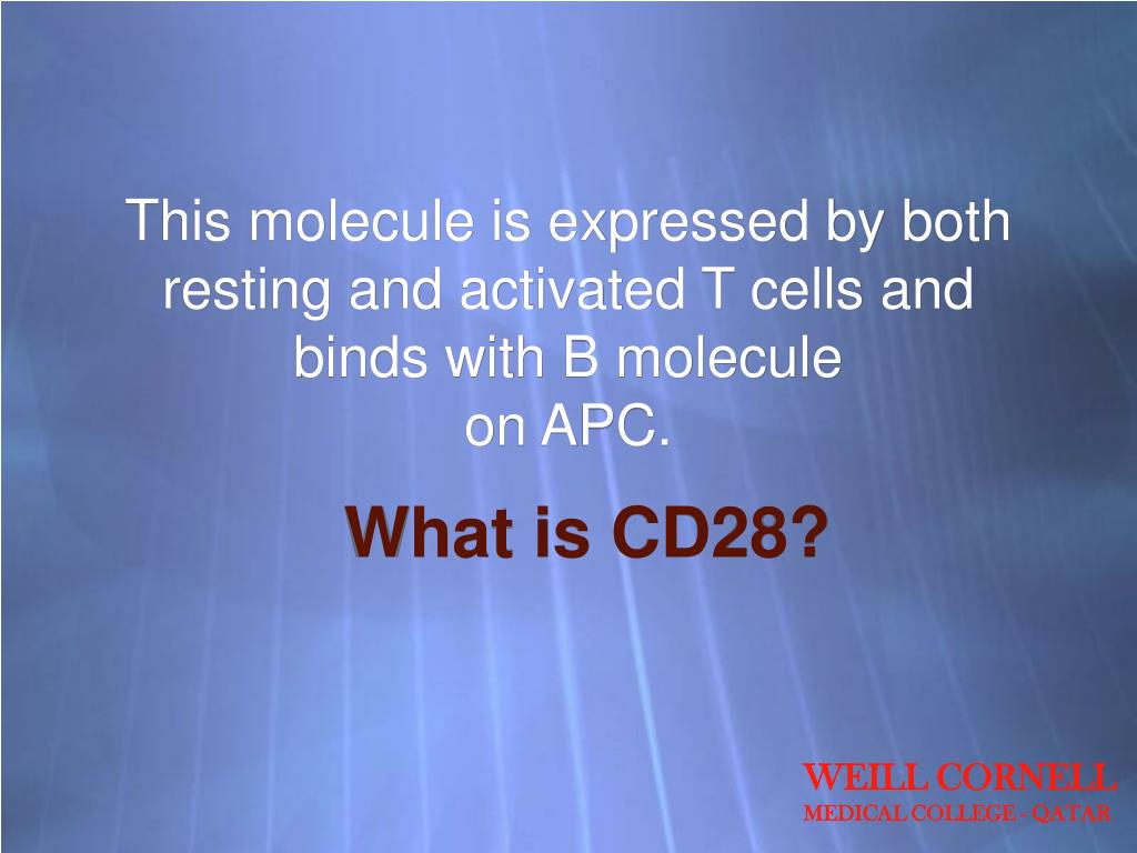 This molecule is expressed by both resting and activated T cells and binds with B molecule