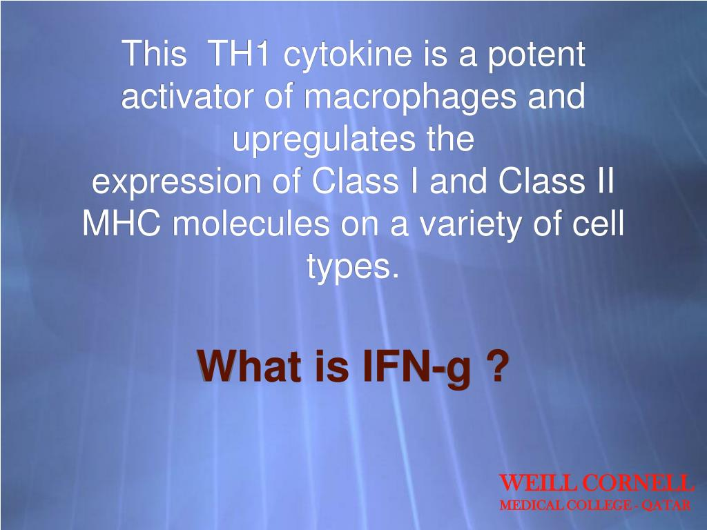 This  TH1 cytokine is a potent activator of macrophages and upregulates the
