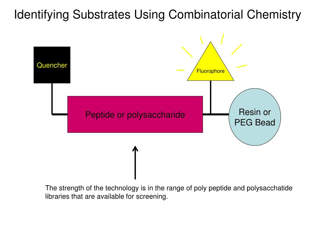 Identifying Substrates Using Combinatorial Chemistry