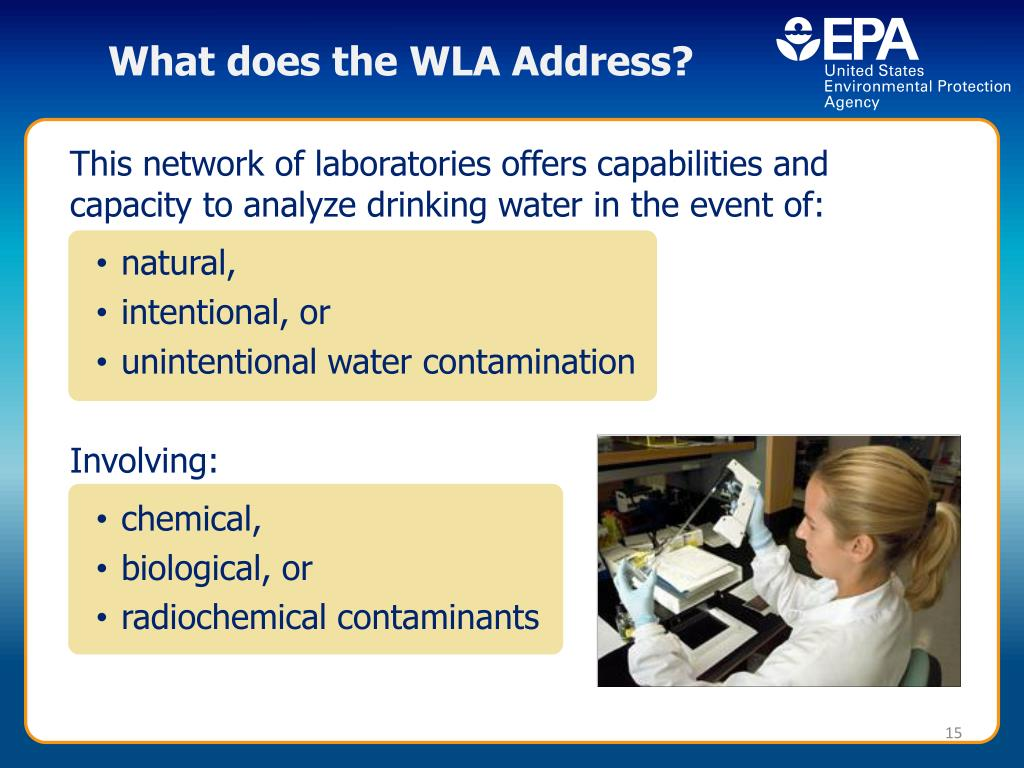 What does the WLA Address?