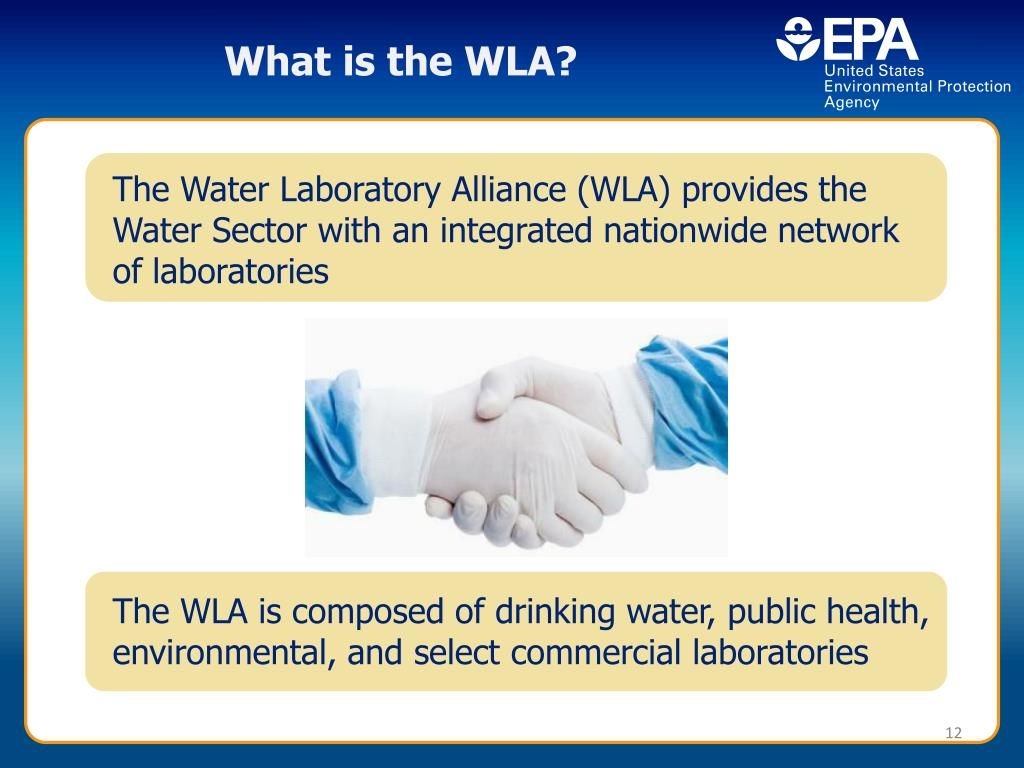 What is the WLA?