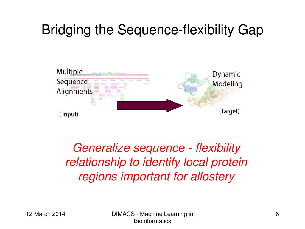 Bridging the Sequence-flexibility Gap