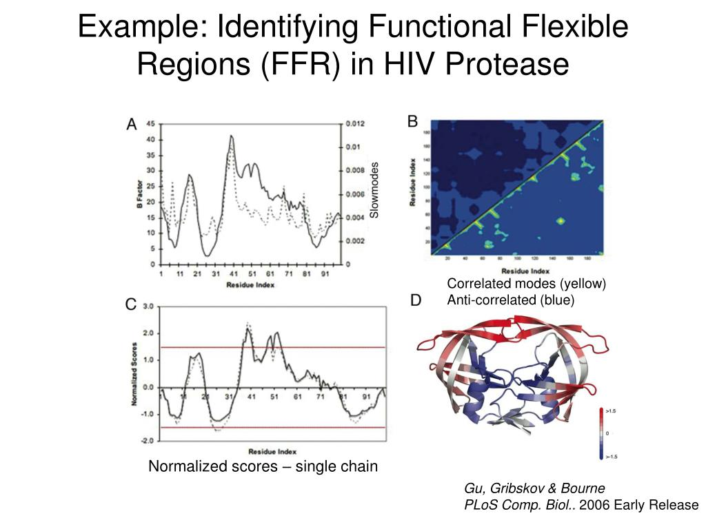 Example: Identifying Functional Flexible Regions (FFR) in HIV Protease