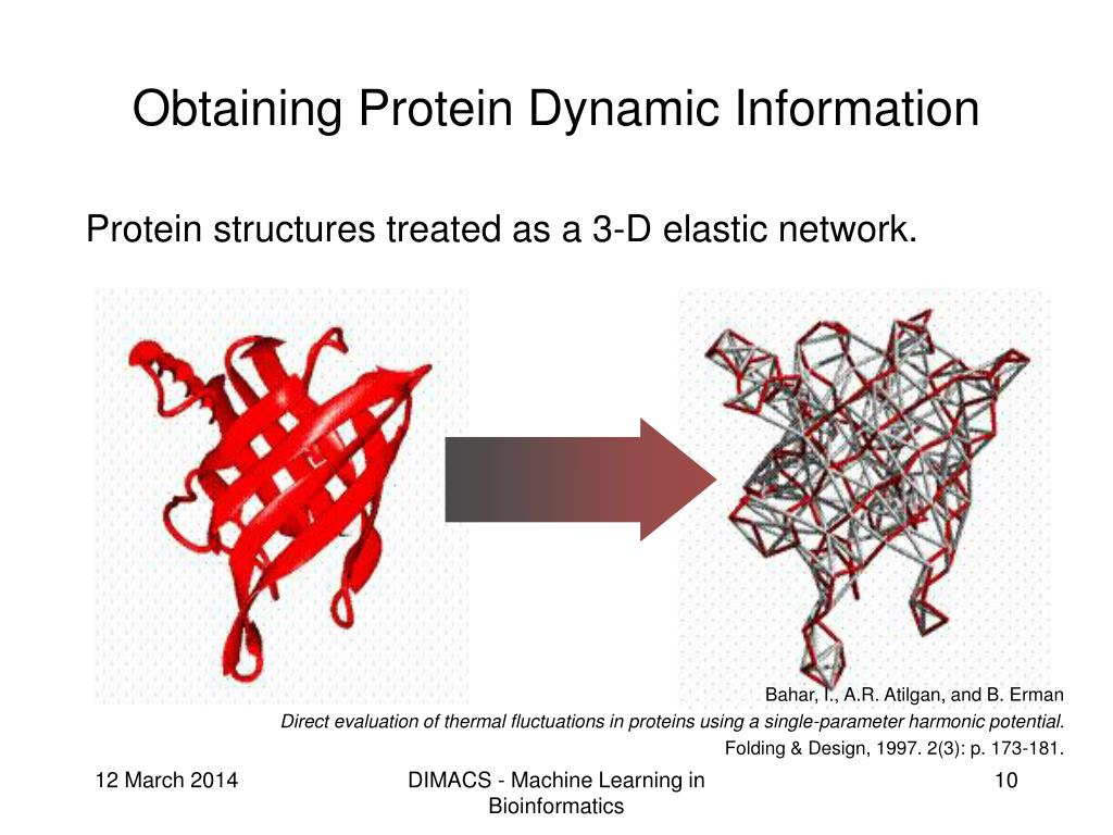 Obtaining Protein Dynamic Information